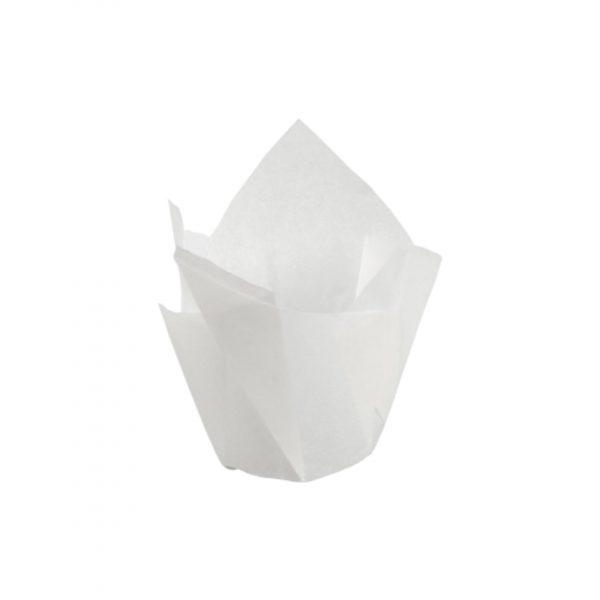 PIROTTINI TULIP CUP 50X80